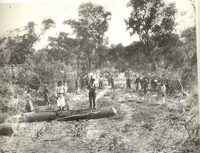 obreros-de-la-forestal-quebracho