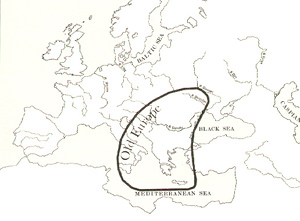 stat_europe
